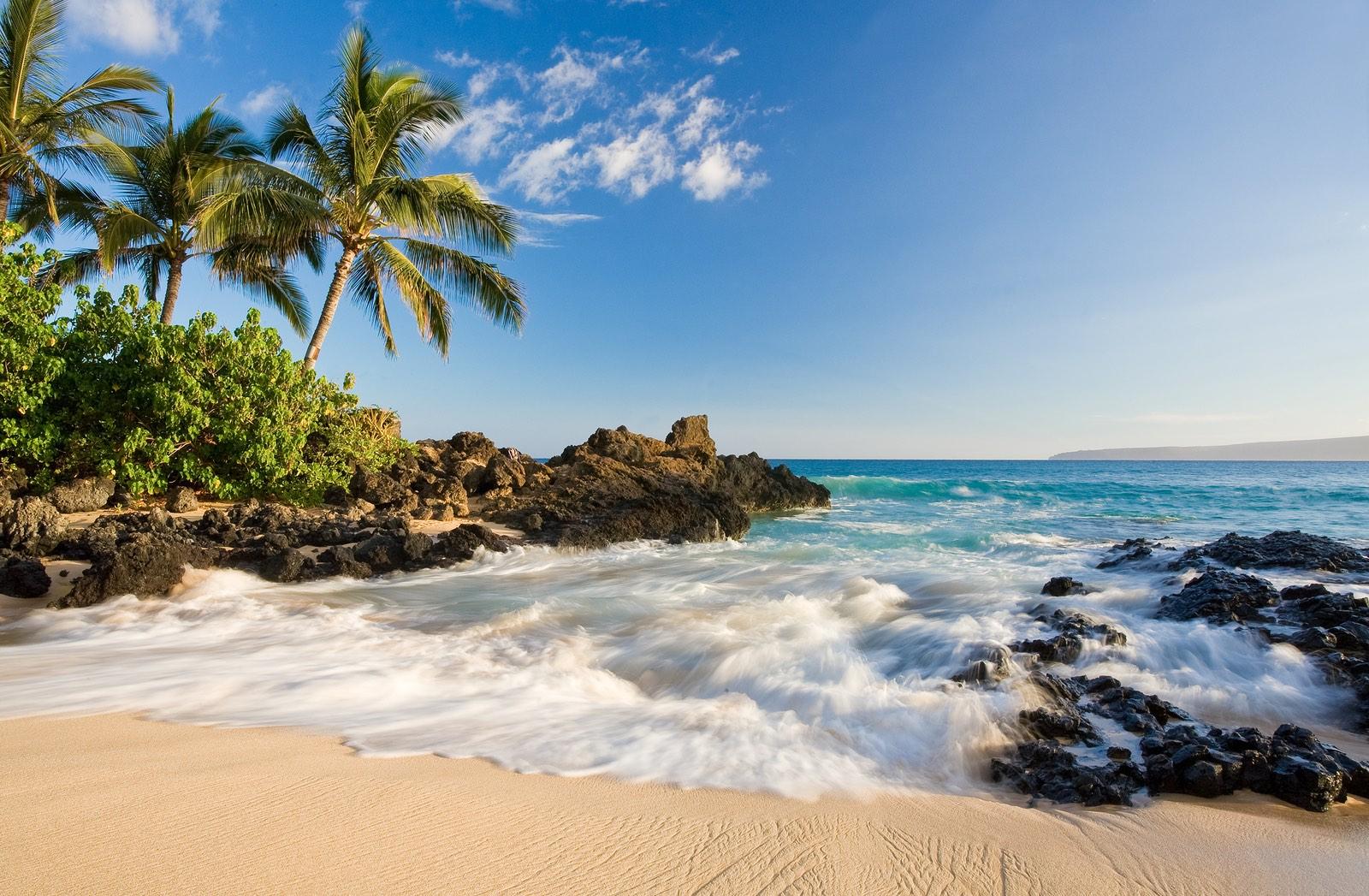 Beach In Tropical Maui Hawaii