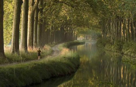 Canal Du Midi In The Morning