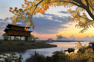 Oriental Landscape